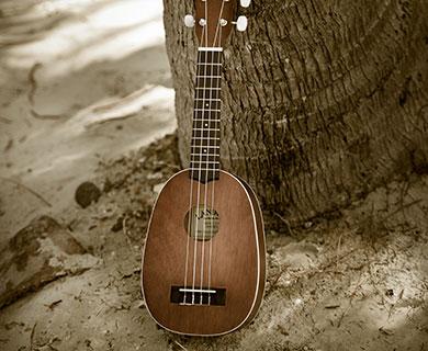 11181291.jpg-entertainment-banjo-square-390