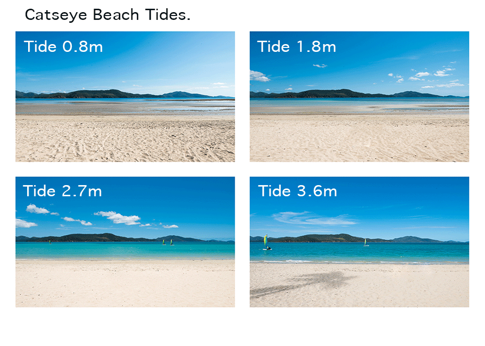 https://www.hamiltonislandweddings.com/wp-content/uploads/2015/01/Catseye-Beach-Tides.png