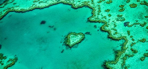 https://www.hamiltonislandweddings.com/wp-content/uploads/2015/03/heart-reef-single-image1301190115.jpg